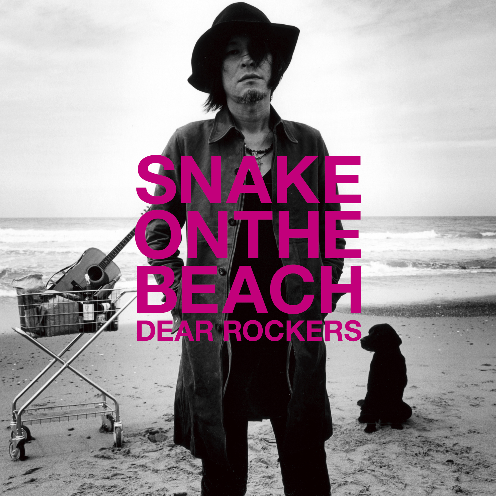 SNAKE ON THE BEACH 「SNAKE ON THE BEACH」