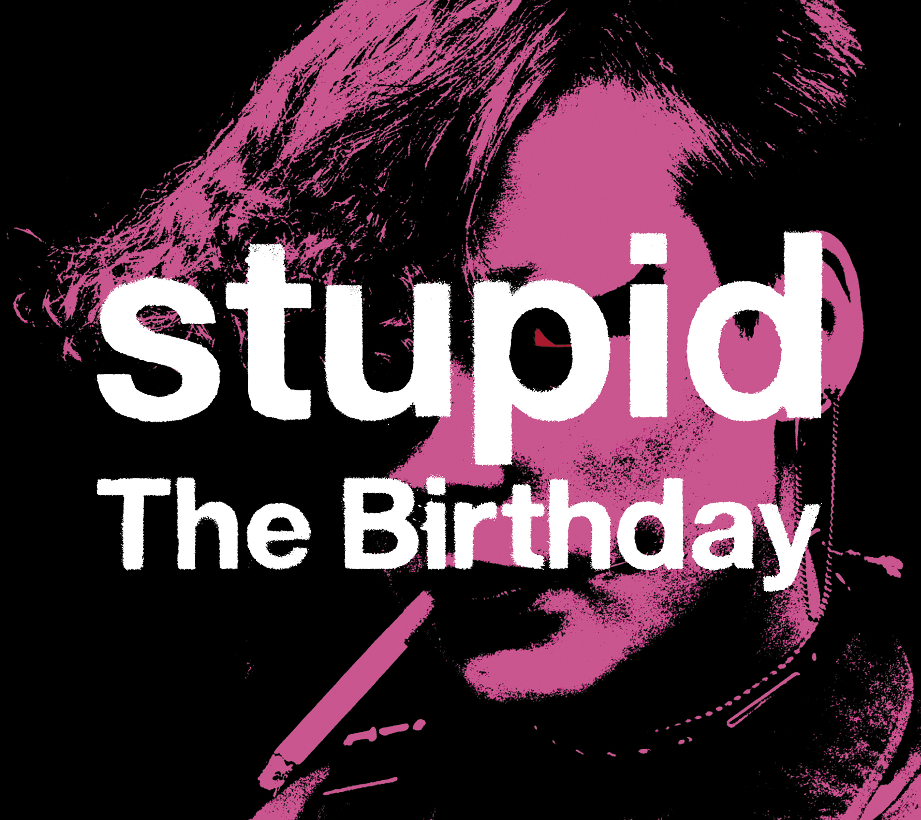 The Birthday 「stupid」