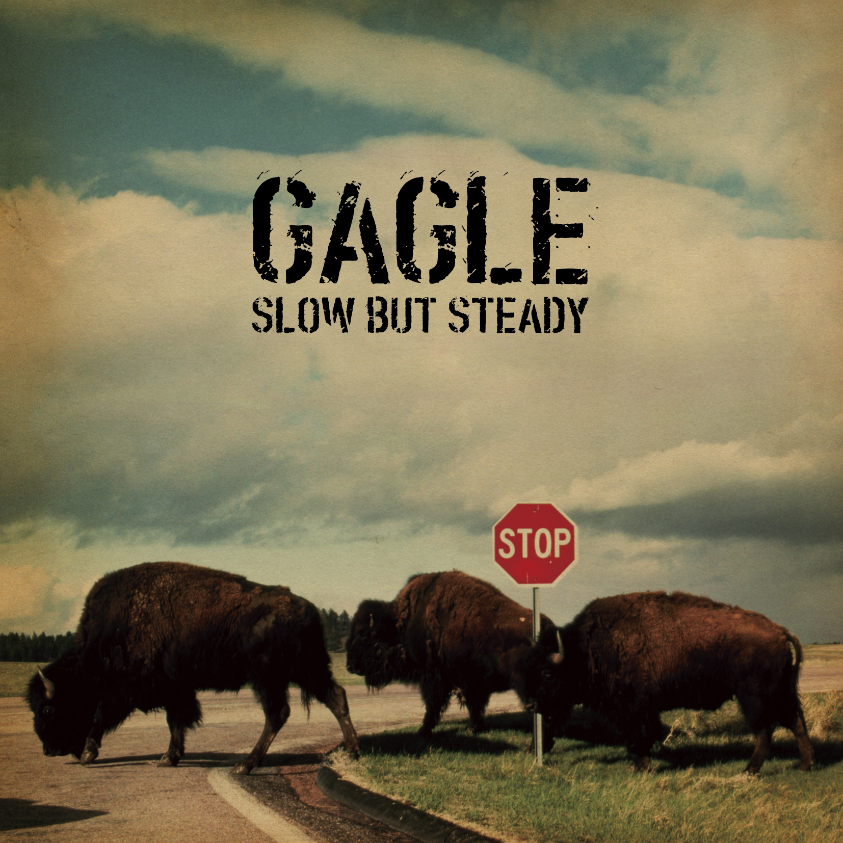 GAGLE 「SLOW BUT STEADY」 10th Anniversary Vinyl